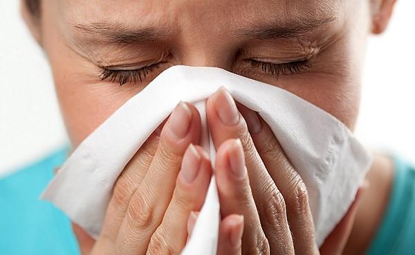 Аллергия у собаки: симптомы, лечение и фото